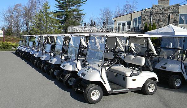 voiturettes et chariots de golf