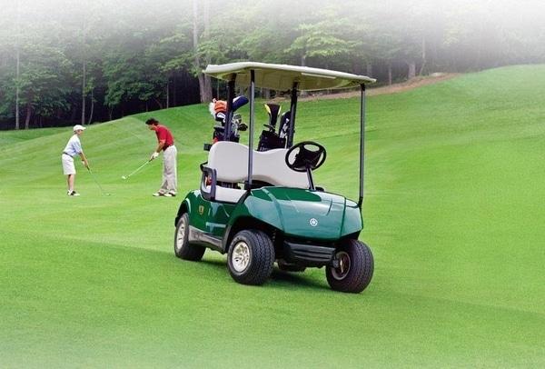 chariots et voiturettes de golf